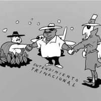 Drug trafficking & Luis Arce - Narcotráfico y Luchin
