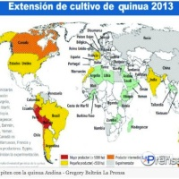 Bolivia to lose its comparative and natural advantage on Quinoa!!