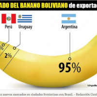 Banana producers are working on new markets in border cities with Brazil