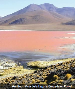 Laguna Colorada Potosi