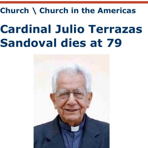 Cardinal Julio