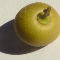 Quitachiyú is a fruit rich in vitamin C
