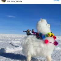 Prop up your Instagram at the Bolivian Salt Flats: UYUNI, POTOSI
