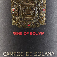Tannat Malbec from Tarija, Bolivia: is a superb wine!