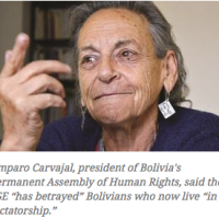 Angry Bolivians demonstrate against Evo's candidacy