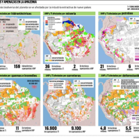 Bolivia lost 18.7 million hectares of its Amazon forest in 13 years