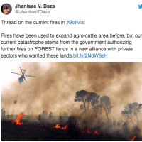 Bolivian's Amazon rainforest ablaze, fires are threatening people and wildlife