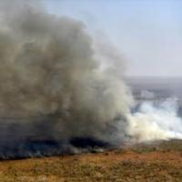 Bolivia's fires destroy 'heritage' rock art sites