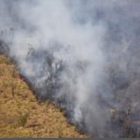 FAN: fires in Bolivia burned down 4.1 million hectares