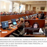 OAS received true verified information regarding there was NO coup d'etat in Bolivia