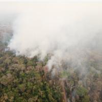 Bolivia is burning